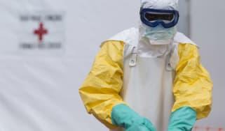 Ebola WD