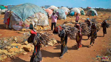 Women carry firewood to makeshift camps