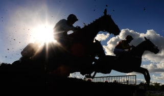 Racehorse jumping