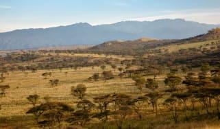 Queen Elizabeth National Park Uganda Safari
