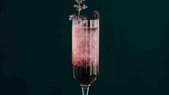 Blackberry Gin Fizz by Sing Gin