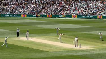 Josh Hazlewood Joe Root Adelaide Ashes cricket