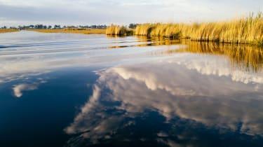 Okavango Delta lagoon