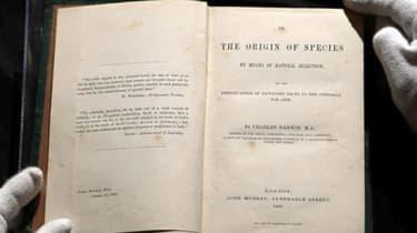 141113-books.jpg