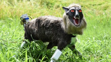 Japanese farmers are using large robotic wolves to scare off wild boars