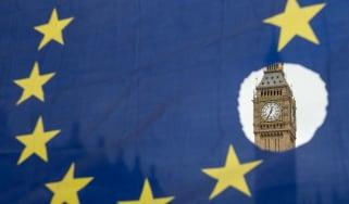 wd-parliament_eu.jpg