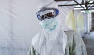 Lassa fever, disease, virus