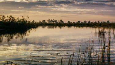 Okavango Delta dusk
