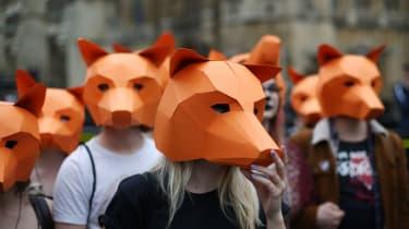 wd-foxhunting_-_peter_macdiarmidgetty_images.jpg