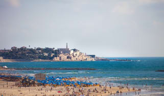 tel_aviv_jaffa_from_tel_aviv_beach_cr_dana_friedlander-israeli_ministry_of_tourism_cropped.jpg