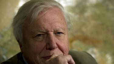 160509-david-attenborough.jpg