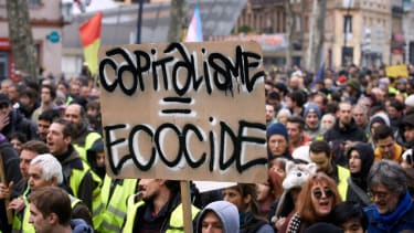 Ecocide placard