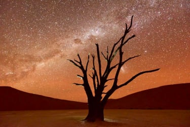 Namibia with Wild Frontiers