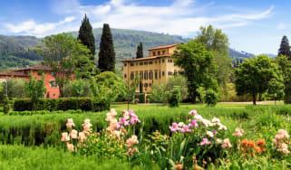 iris_garden_at_villa_la_massa.jpg