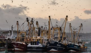 Fishing boats moored in a UK harbour.