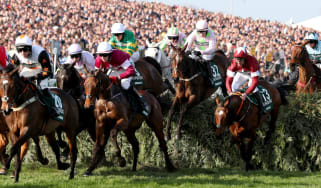Jockey Davy Russell rode Tiger Roll (No.13) to victory at the 2018 Grand National