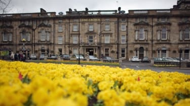 Yellow spring flowers in the Spa town of Harrogate