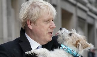boris_kissing_a_dog.jpg
