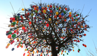 Eggs decorate a tree in Germany
