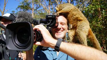 Lemuria Land, Nosy Be, Madagascar - A lemur plays with a camera man's hair. (WGBH Educational Foundation/Chun-Wei Yi)
