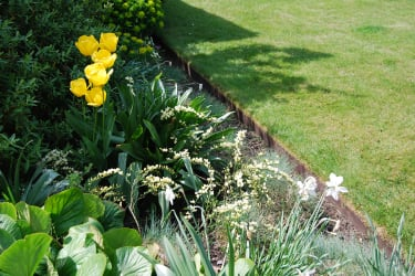 A flowerbed and lawn divided by a metal EverEdge border