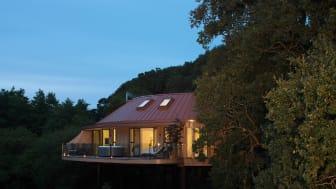 Treehouse Suites