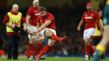 Wales full-back Leigh Halfpenny suffered concussion against Australia in November