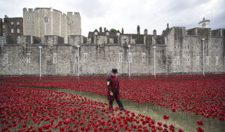 888,246 ceramic poppies commemorate WWI at the Tower of London