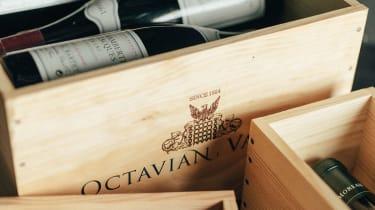 1001-octavian-1400.jpg