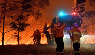 Firefighters hose down trees in a bid to slow the spread of bushfires around Nowra in Australia