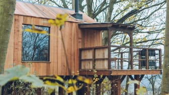 Wild Escapes treehouses