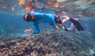 free-diving-2.jpg