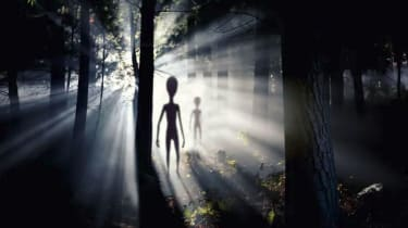 Aliens seen in the woods.