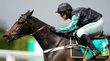 Altior has been withdrawn from the Cheltenham Festival